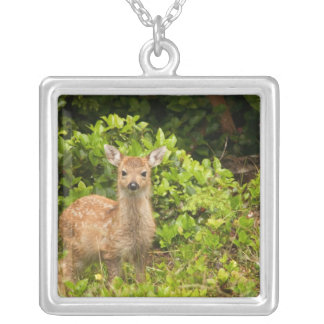 North America, Canada, Queen Charlotte 2 Silver Plated Necklace