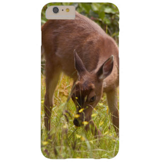 North America, Canada, Queen Charlotte Barely There iPhone 6 Plus Case