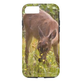 North America, Canada, Queen Charlotte iPhone 8/7 Case