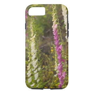 North America, Canada, Queen Charlotte Islands, 2 iPhone 8/7 Case