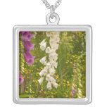 North America, Canada, Queen Charlotte Islands, 5 Silver Plated Necklace