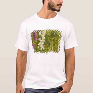 North America, Canada, Queen Charlotte Islands, 5 T-Shirt