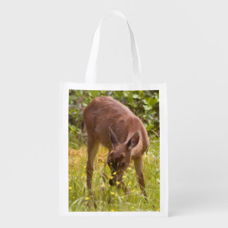 North America, Canada, Queen Charlotte Reusable Grocery Bag