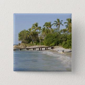 North America, Caribbean, Dominican Republic. 15 Cm Square Badge