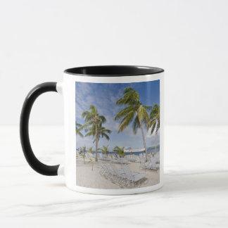 North America, Caribbean, Dominican Republic. 2 Mug