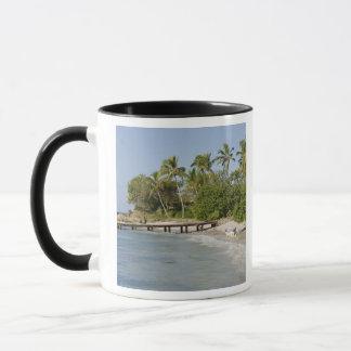 North America, Caribbean, Dominican Republic. Mug