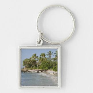 North America, Caribbean, Dominican Republic. Silver-Colored Square Key Ring