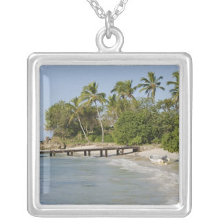 North America, Caribbean, Dominican Republic. Silver Plated Necklace