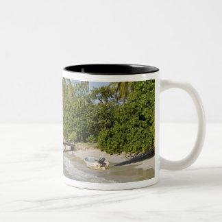 North America, Caribbean, Dominican Republic. Two-Tone Coffee Mug
