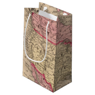 North America Map by Mitchell Small Gift Bag