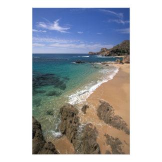 North America, Mexico, Baja California Sur, Photo Print