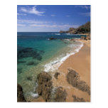 North America, Mexico, Baja California Sur, Postcard