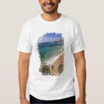 North America, Mexico, Baja California Sur, Tshirts