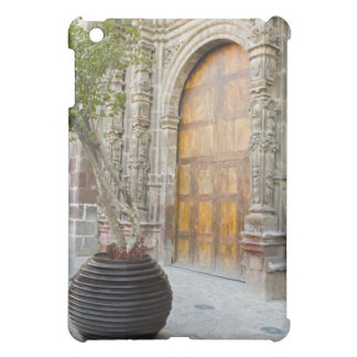North America, Mexico, Guanajuato state, San 3 iPad Mini Case