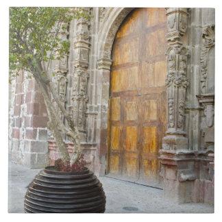North America, Mexico, Guanajuato state, San 3 Tile