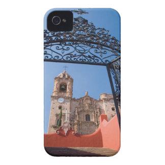 North America, Mexico, Guanajuato State. The Blackberry Case