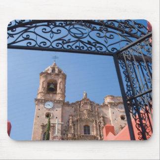 North America, Mexico, Guanajuato State. The Mouse Mat