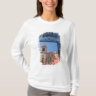 North America, Mexico, Guanajuato State. The T-Shirt