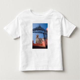 North America, Mexico, Guanajuato State. The Toddler T-Shirt