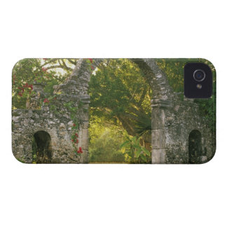 North America, Mexico, Yucatan Peninsula, Case-Mate iPhone 4 Cases
