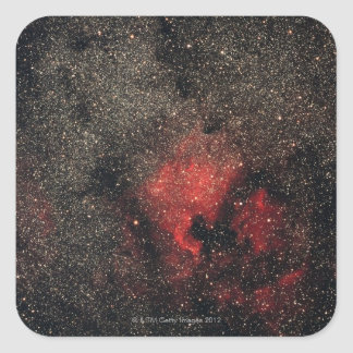 North America Nebula and Pelican Nebula Square Sticker