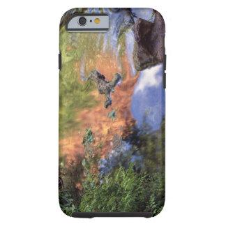 North America, U.S.A., Arizona, Havasu Canyon, 3 Tough iPhone 6 Case