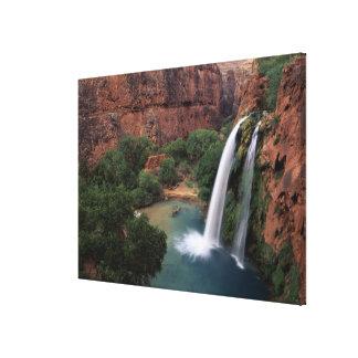 North America, U.S.A., Arizona, Havasu Canyon, Gallery Wrap Canvas