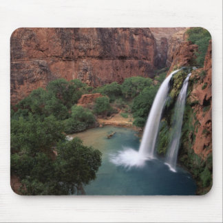 North America, U.S.A., Arizona, Havasu Canyon, Mouse Mat