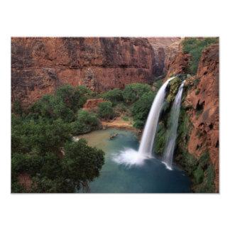 North America, U.S.A., Arizona, Havasu Canyon, Photo Print