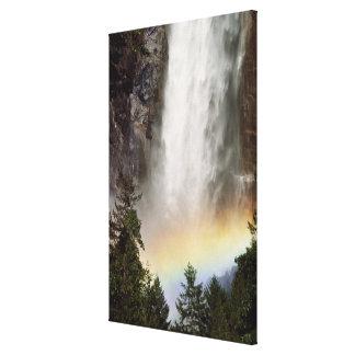 North America, U.S.A., California, Yosemite Gallery Wrap Canvas