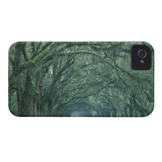North America, U.S.A., Georgia, Savannah, iPhone 4 Case-Mate Case