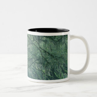 North America, U.S.A., Georgia, Savannah, Two-Tone Coffee Mug
