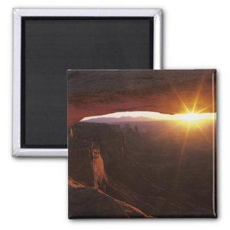 North America, U.S.A., Utah, Canyonlands Magnet