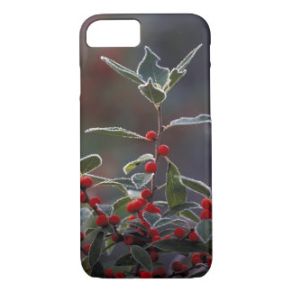 North America, United States, New England. Holly 2 iPhone 8/7 Case