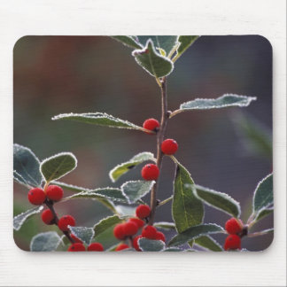 North America, United States, New England. Holly 2 Mouse Mat