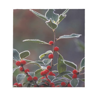 North America, United States, New England. Holly 2 Notepad