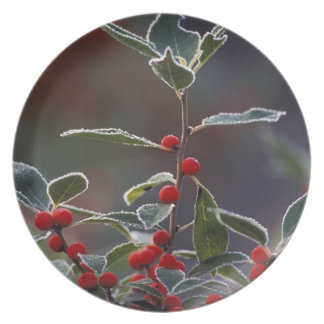 North America, United States, New England. Holly 2 Party Plates