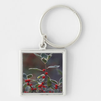 North America, United States, New England. Holly 2 Silver-Colored Square Key Ring