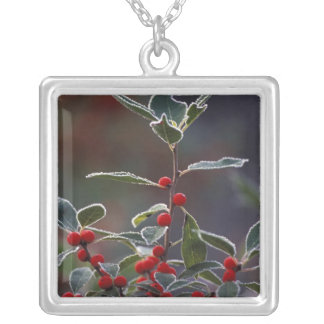 North America, United States, New England. Holly 2 Silver Plated Necklace