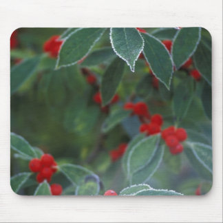 North America, United States, New England. Holly Mouse Pad