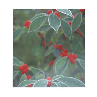 North America, United States, New England. Holly Notepad