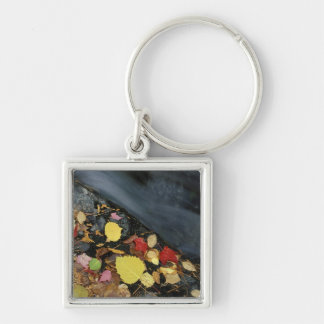North America, US, ME, A stream in fall. Key Ring