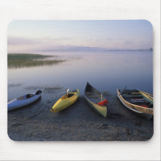 North America, US, ME, Boats on the shore of Mouse Mat