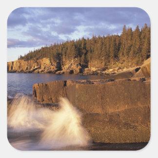 North America, US, ME, The rocky Maine coast. Square Sticker