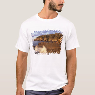 North America, US, ME, The rocky Maine coast. T-Shirt