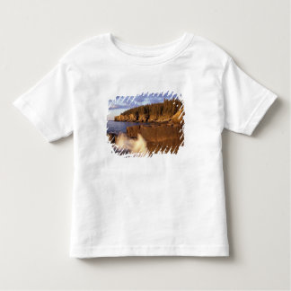 North America, US, ME, The rocky Maine coast. Toddler T-Shirt