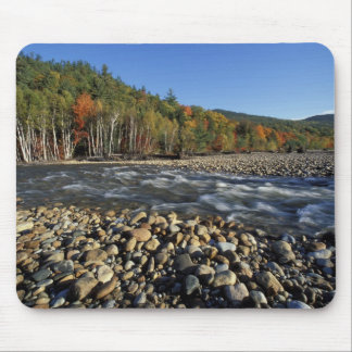 North America, US, NH, A cobble beach on the Mouse Mat