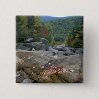 North America, US, NH, Fall foliage in New 15 Cm Square Badge