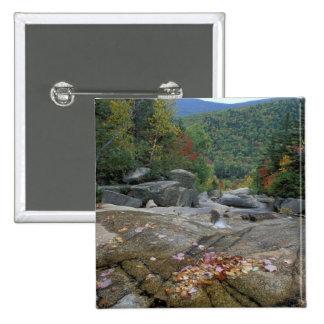 North America, US, NH, Fall foliage in New 15 Cm Square Badge