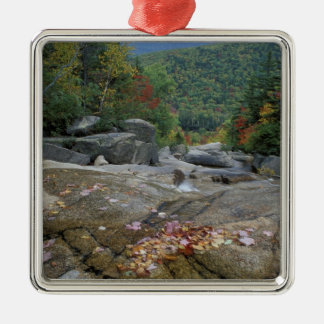North America, US, NH, Fall foliage in New Christmas Ornament